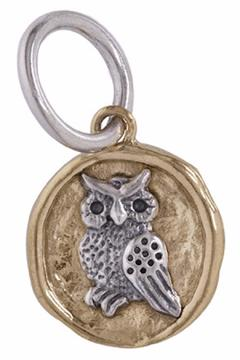 Shoptiques Product: Owl Camp Charm