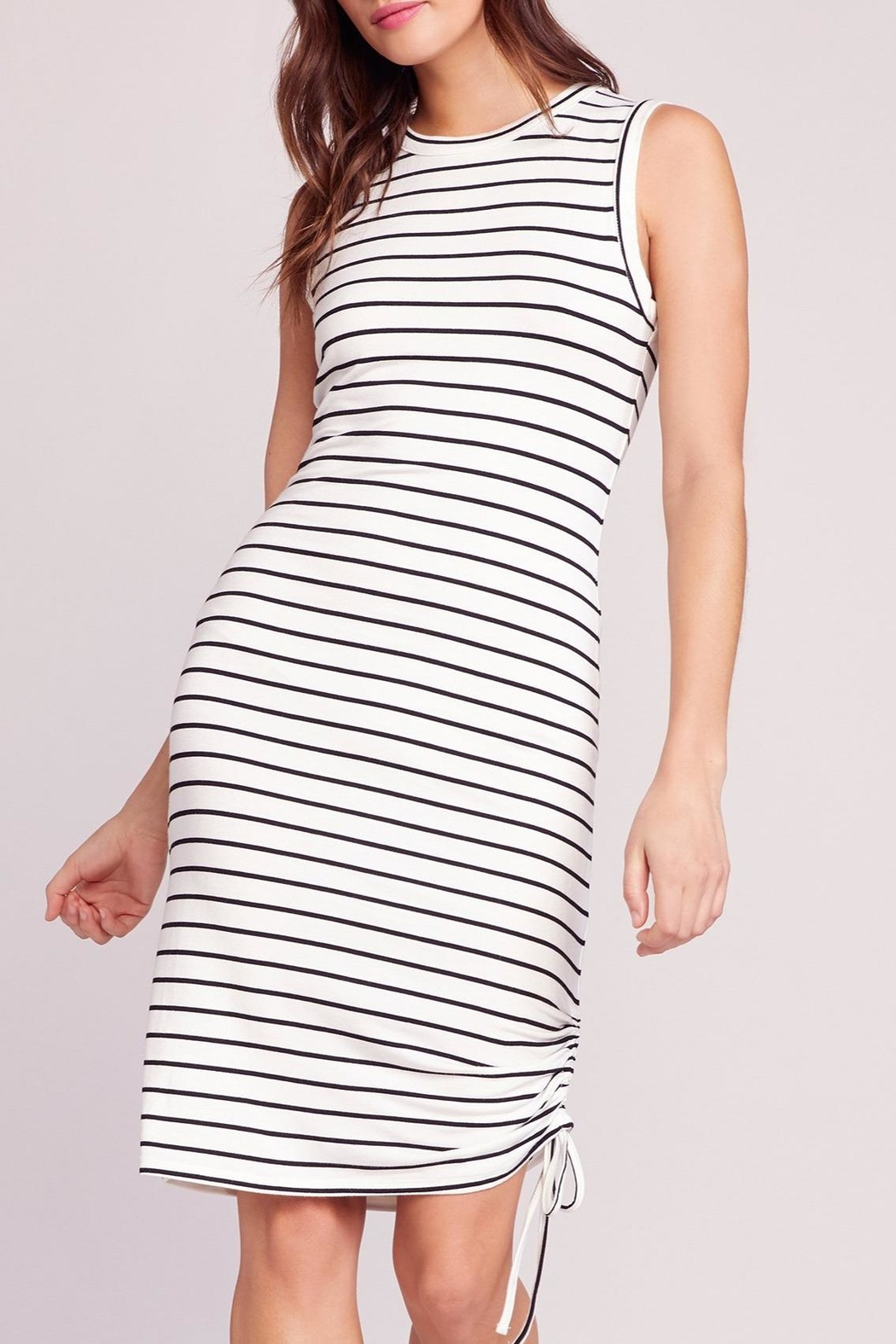 BB Dakota What's-The-Ruche Stripe Dress - Side Cropped Image
