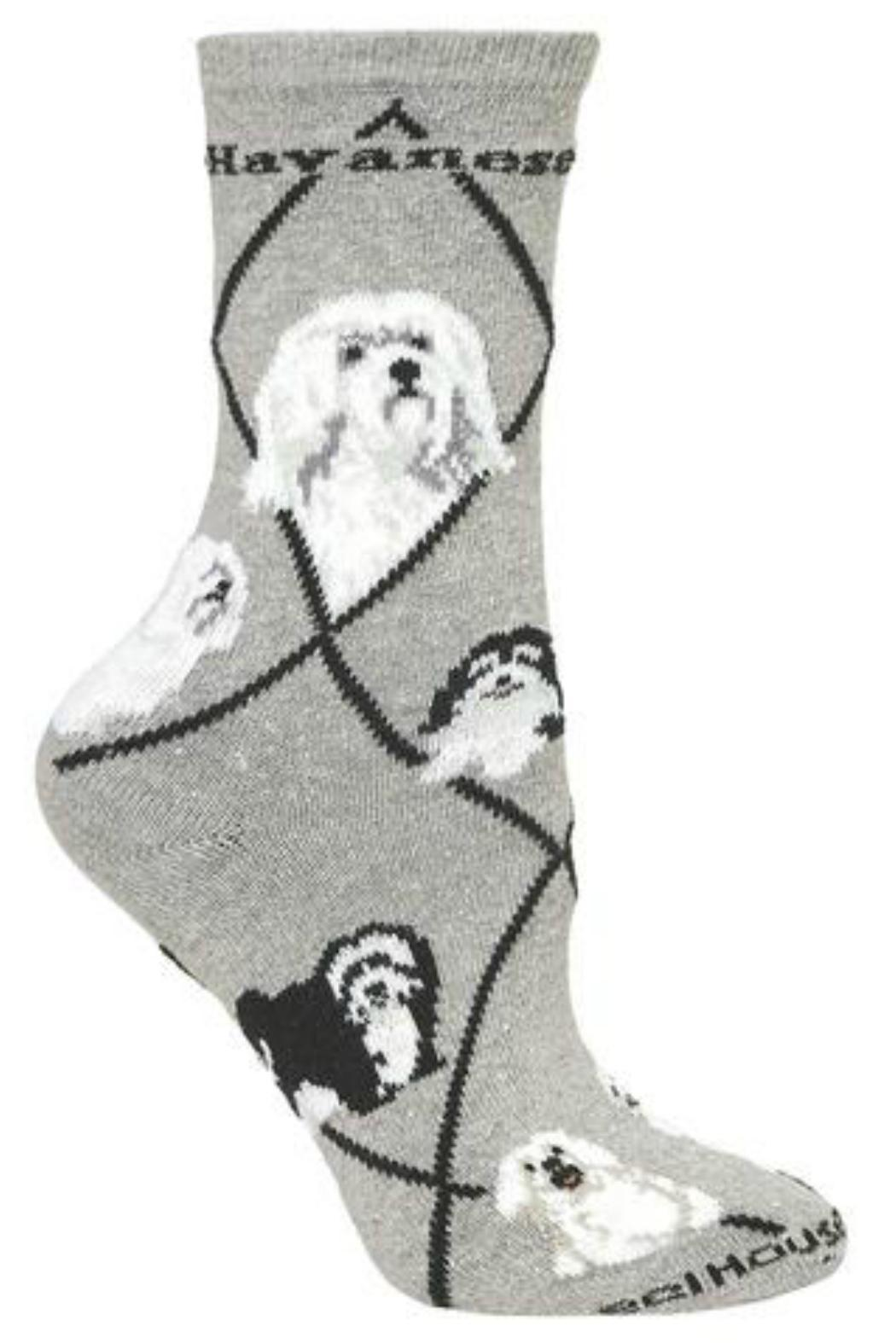 Wheel House Designs Havanese Dog Sock from Syracuse by White Sleigh ...
