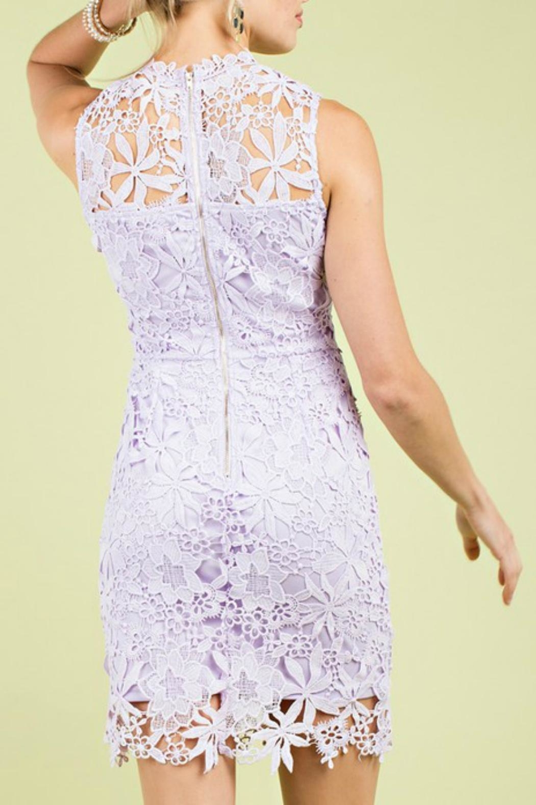 Pretty Little Things Whimisical Lace Dress - Front Full Image