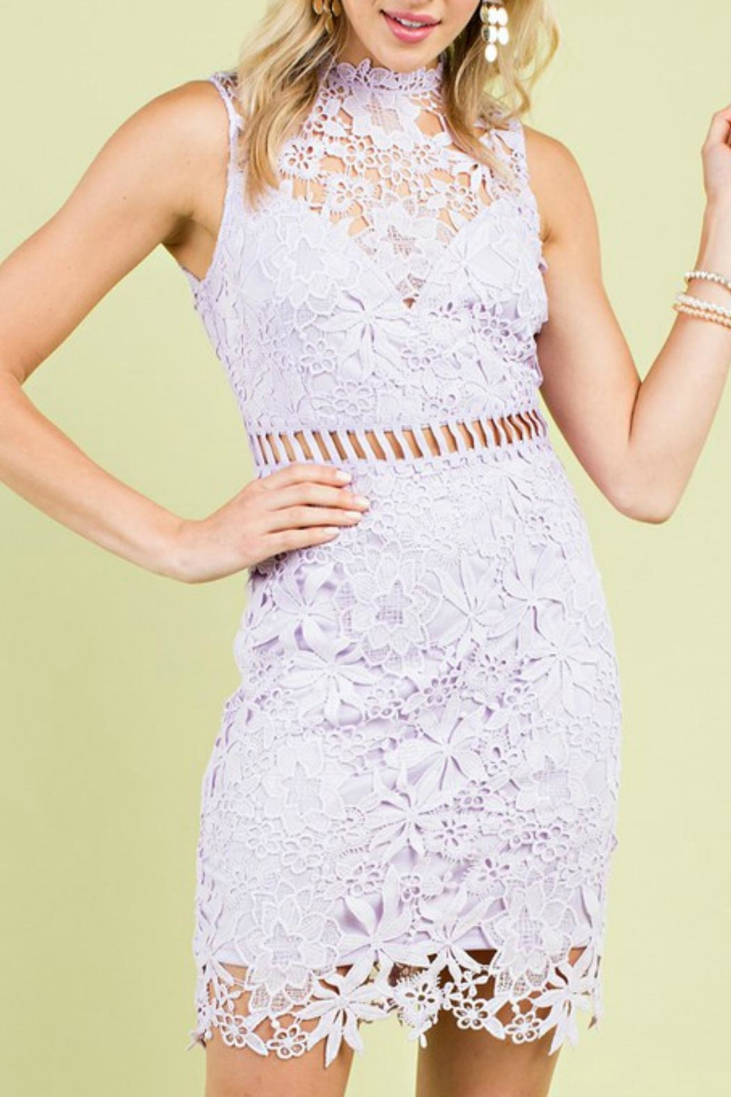 Pretty Little Things Whimisical Lace Dress - Main Image