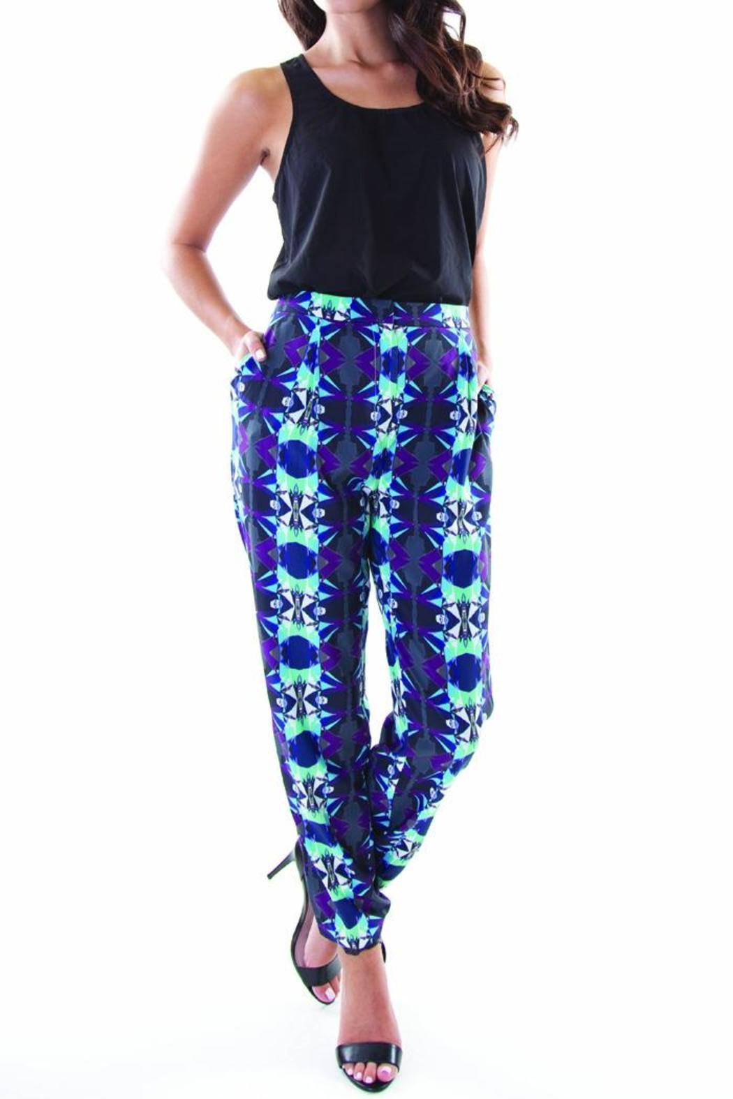 Whistle and Wolf Geo-Print Pant - Front Cropped Image