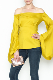 WHY DRESS Spice Bell Sleeve Top - Front cropped