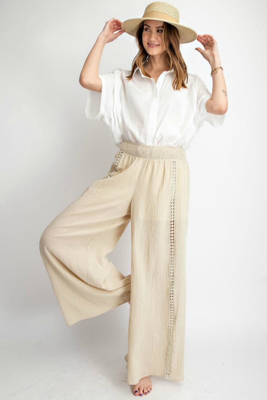 easel Wide-Leg Gauzy Pants - Front Cropped Image