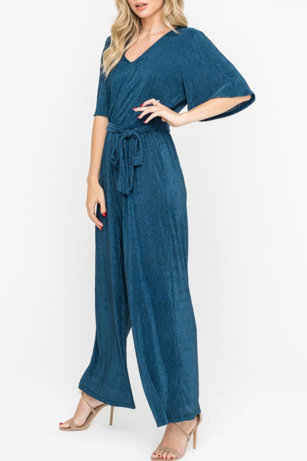 Lush Clothing  Wide Leg Jumpsuit - Front Full Image