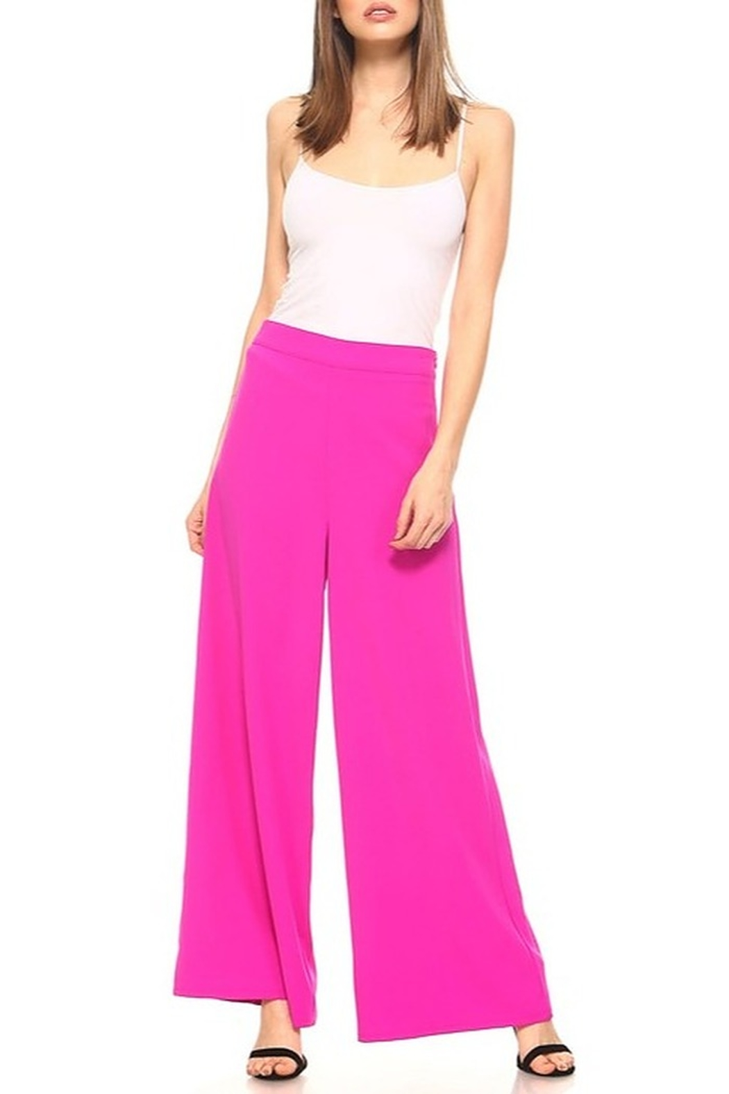 TCEC Wide Leg Pants - Front Cropped Image