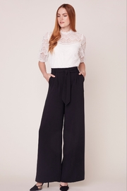 BB Dakota Wide Stride Pant - Back cropped