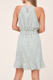 Staccato Wild For You Dress - Front full body