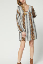 entro  Wild Love Dress - Front cropped