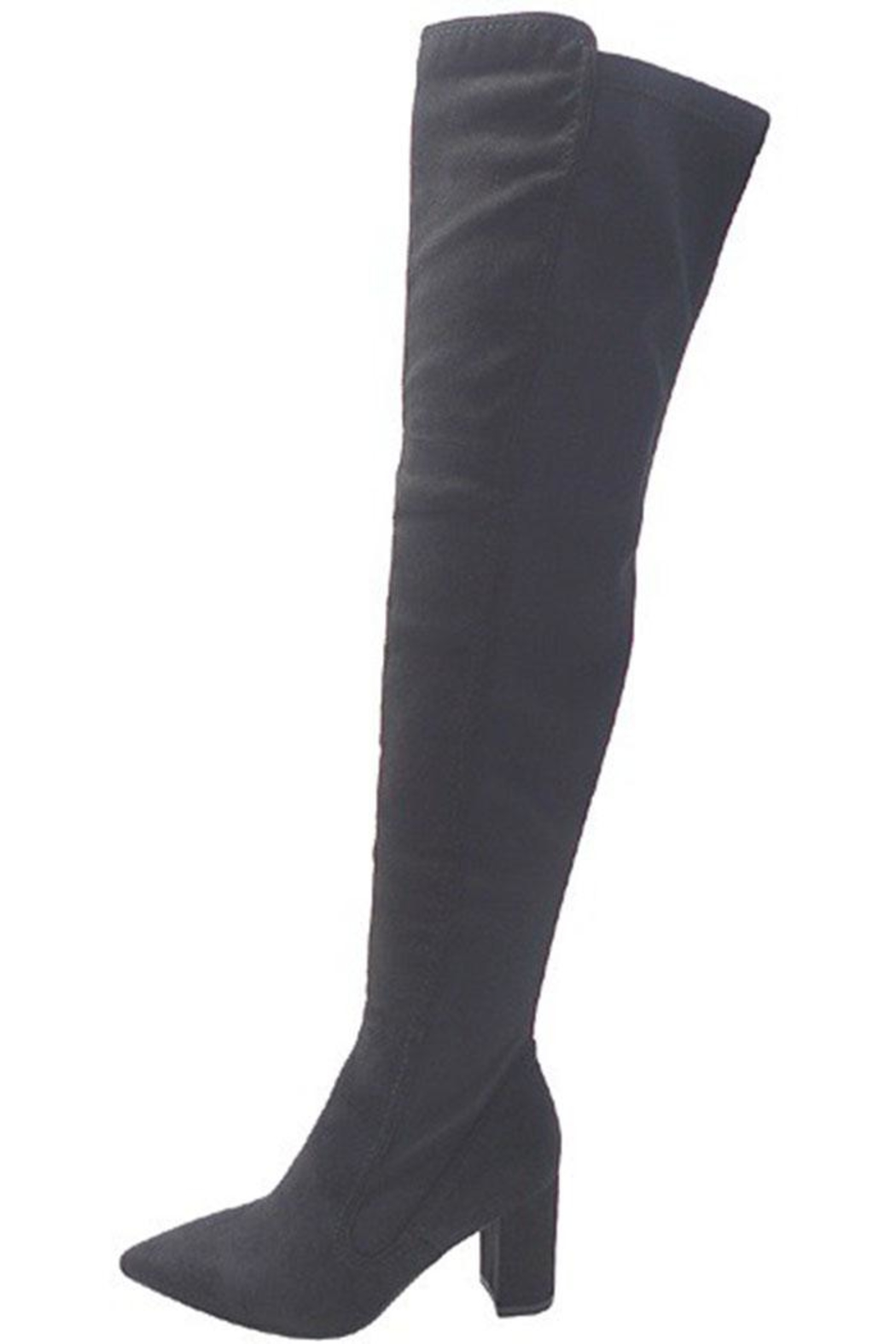 Wild Diva Over-The-Knee Boots - Front Full Image