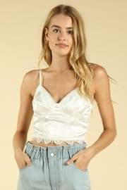 Wild Honey Lace Trim Crop-Top - Front cropped