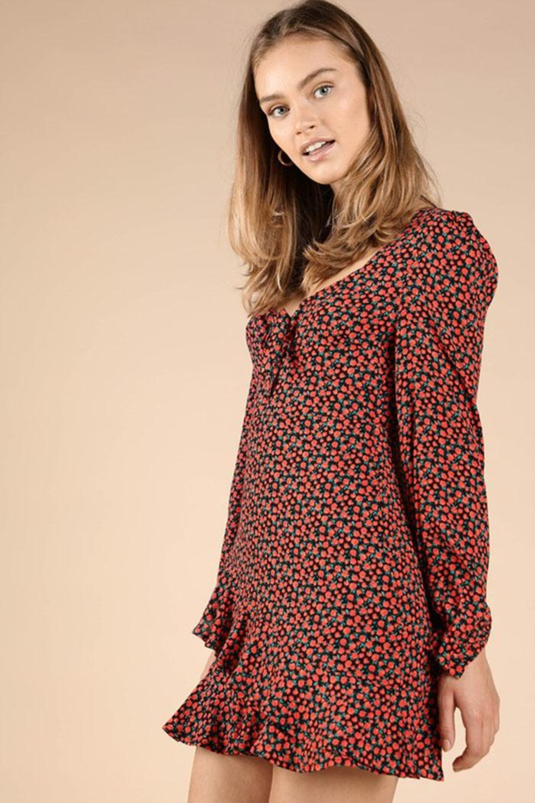 Wild Honey Patterned Mini Dress - Side Cropped Image