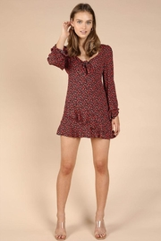 Wild Honey Patterned Mini Dress - Front full body