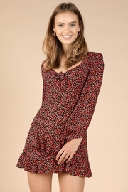 Wild Honey Patterned Mini Dress - Product Mini Image