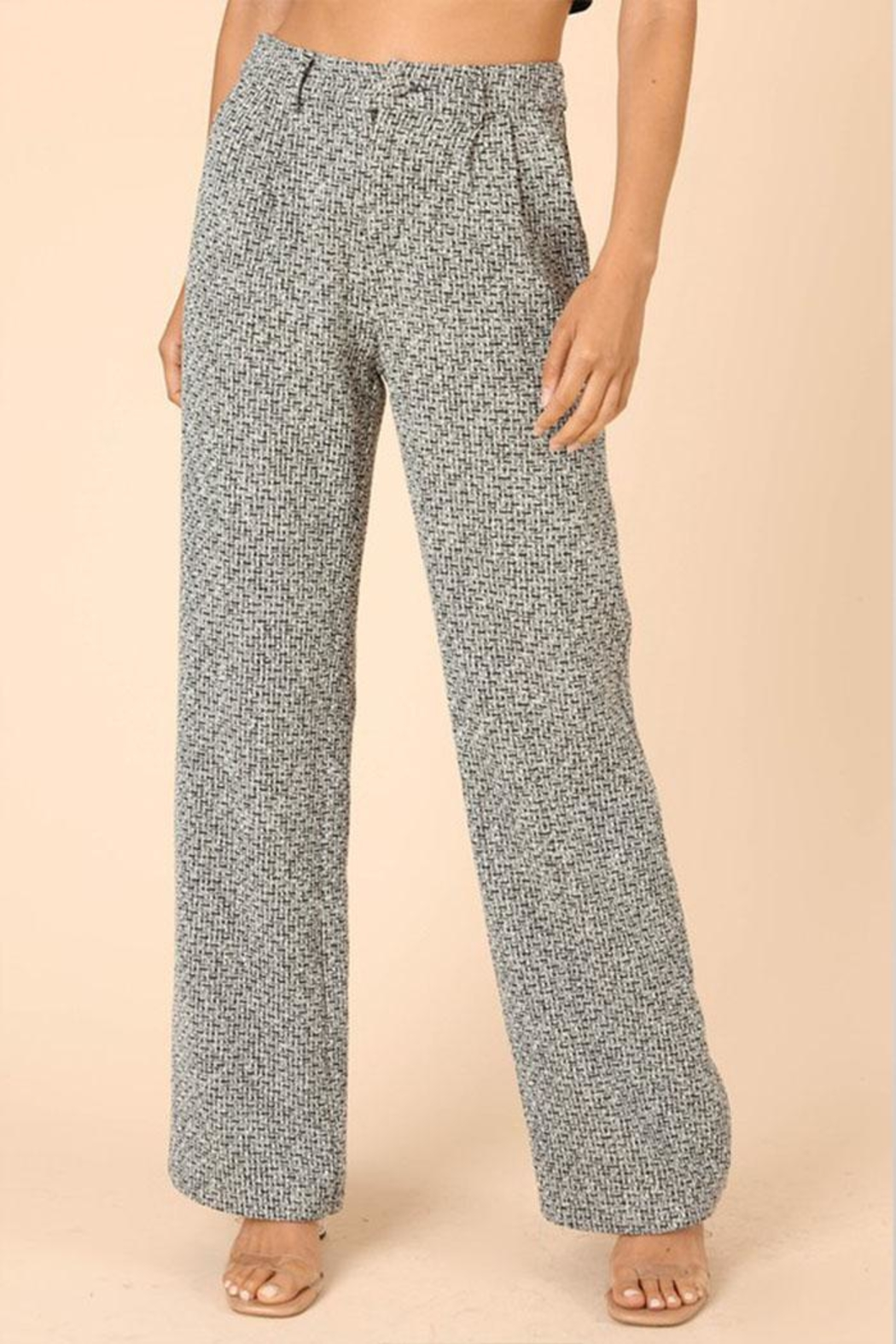 Wild Honey Tweed Wide-Leg Pants - Front Cropped Image