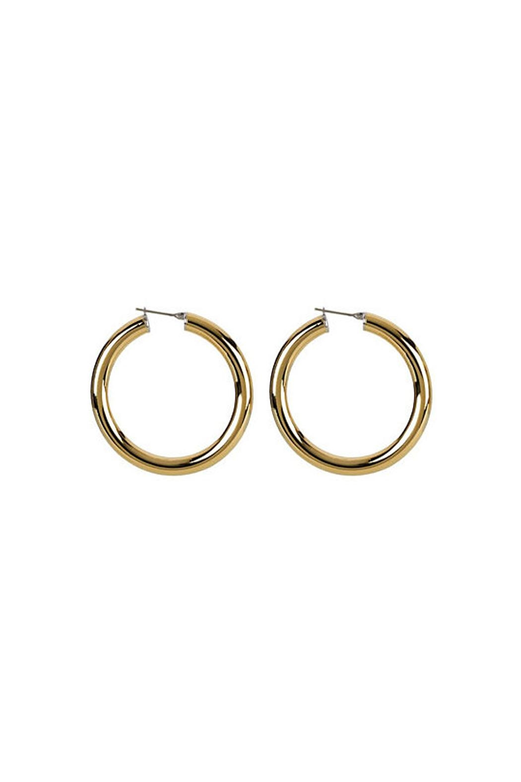 Wild Lilies Jewelry  14k Gold Hoops - Front Full Image