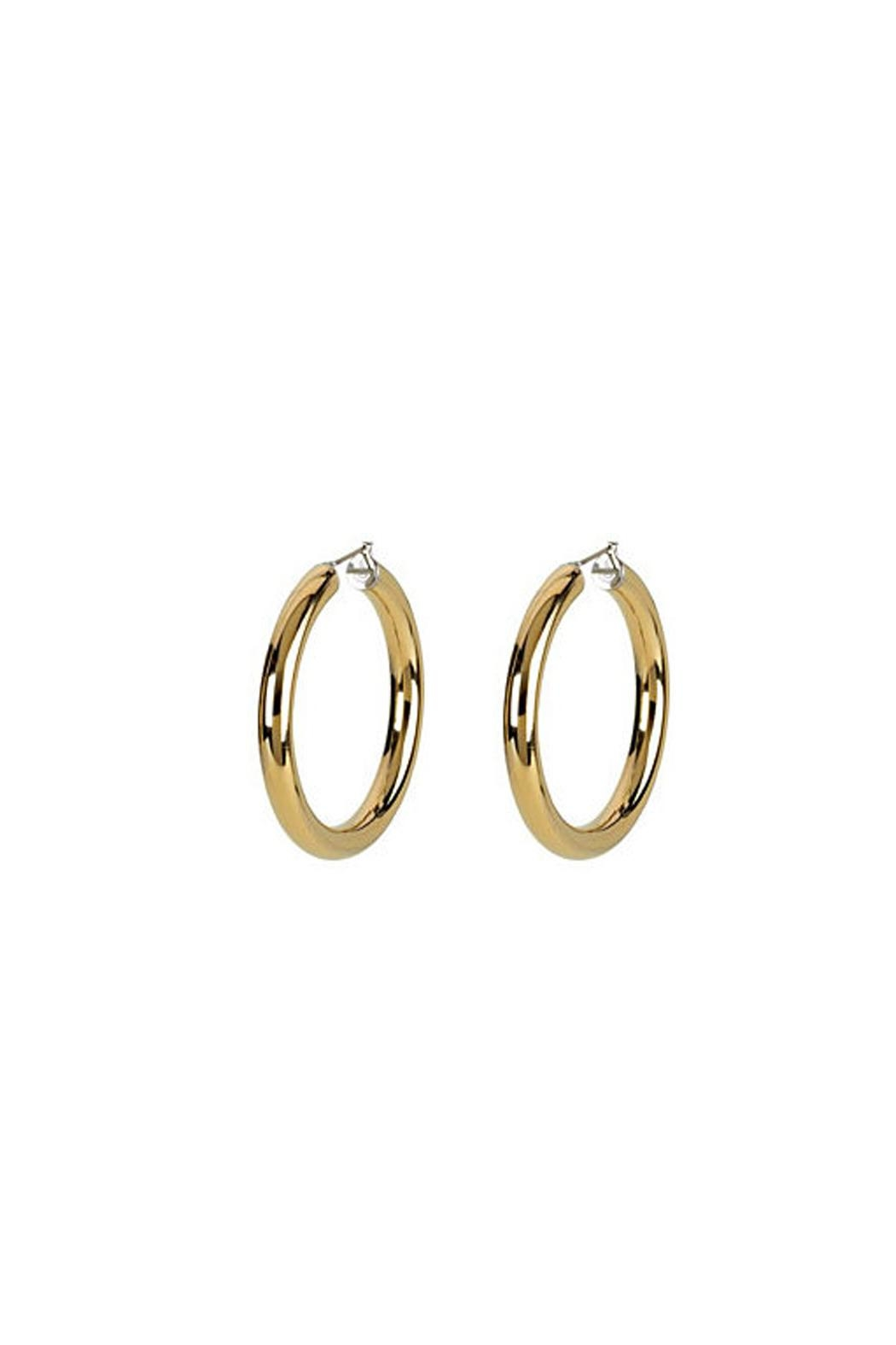 Wild Lilies Jewelry  14k Gold Hoops - Main Image