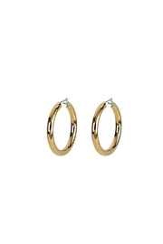 Wild Lilies Jewelry  14k Gold Hoops - Front cropped