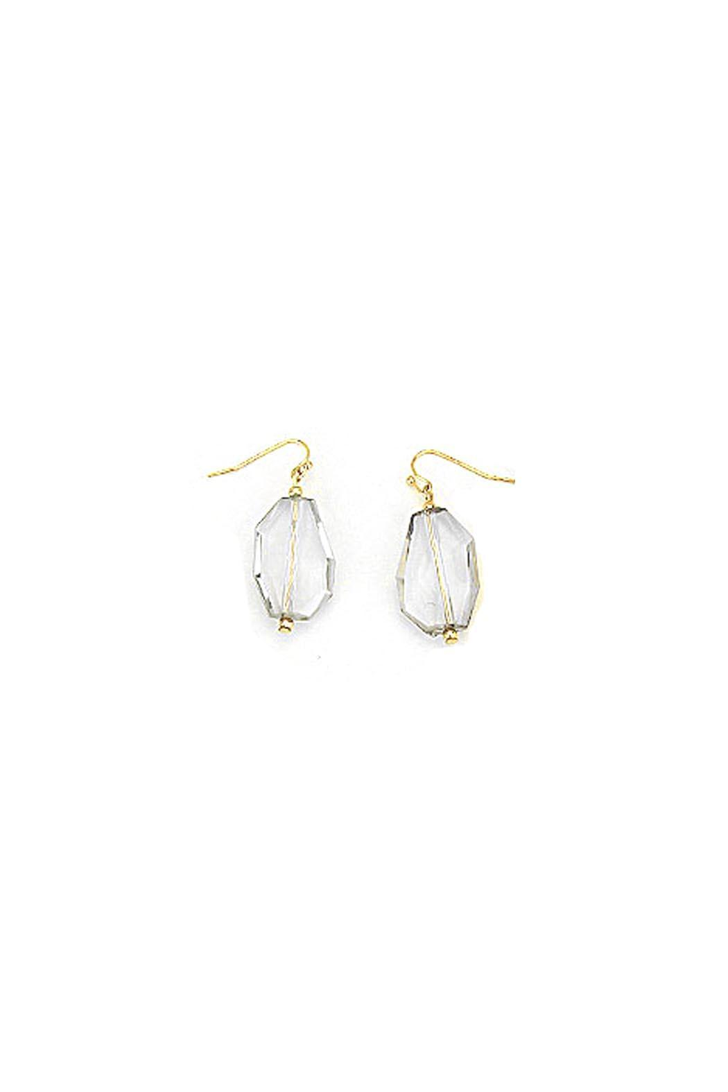 Wild Lilies Jewelry  Abstract Drop Earrings - Main Image