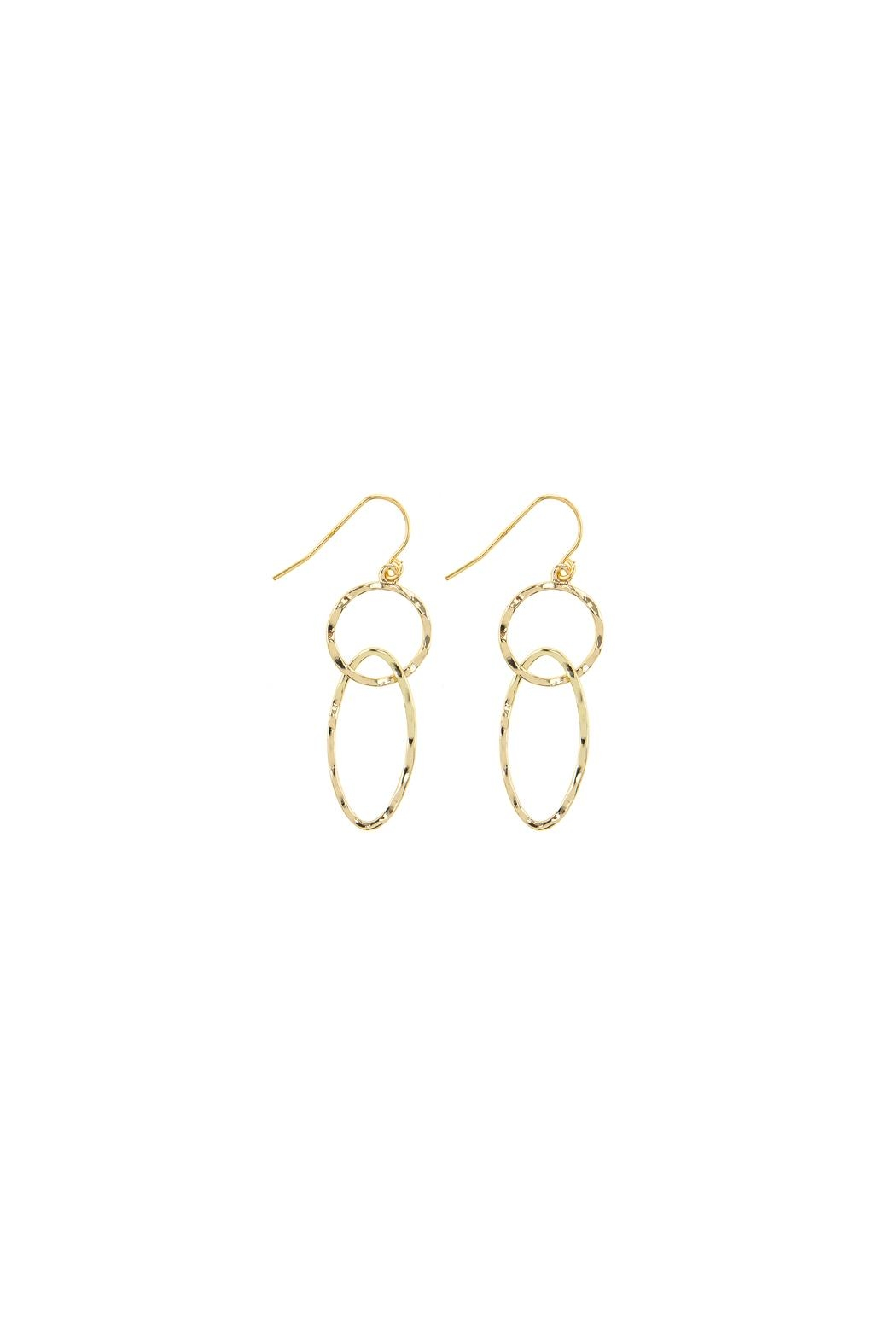 Wild Lilies Jewelry  Chain Link Earrings - Front Cropped Image