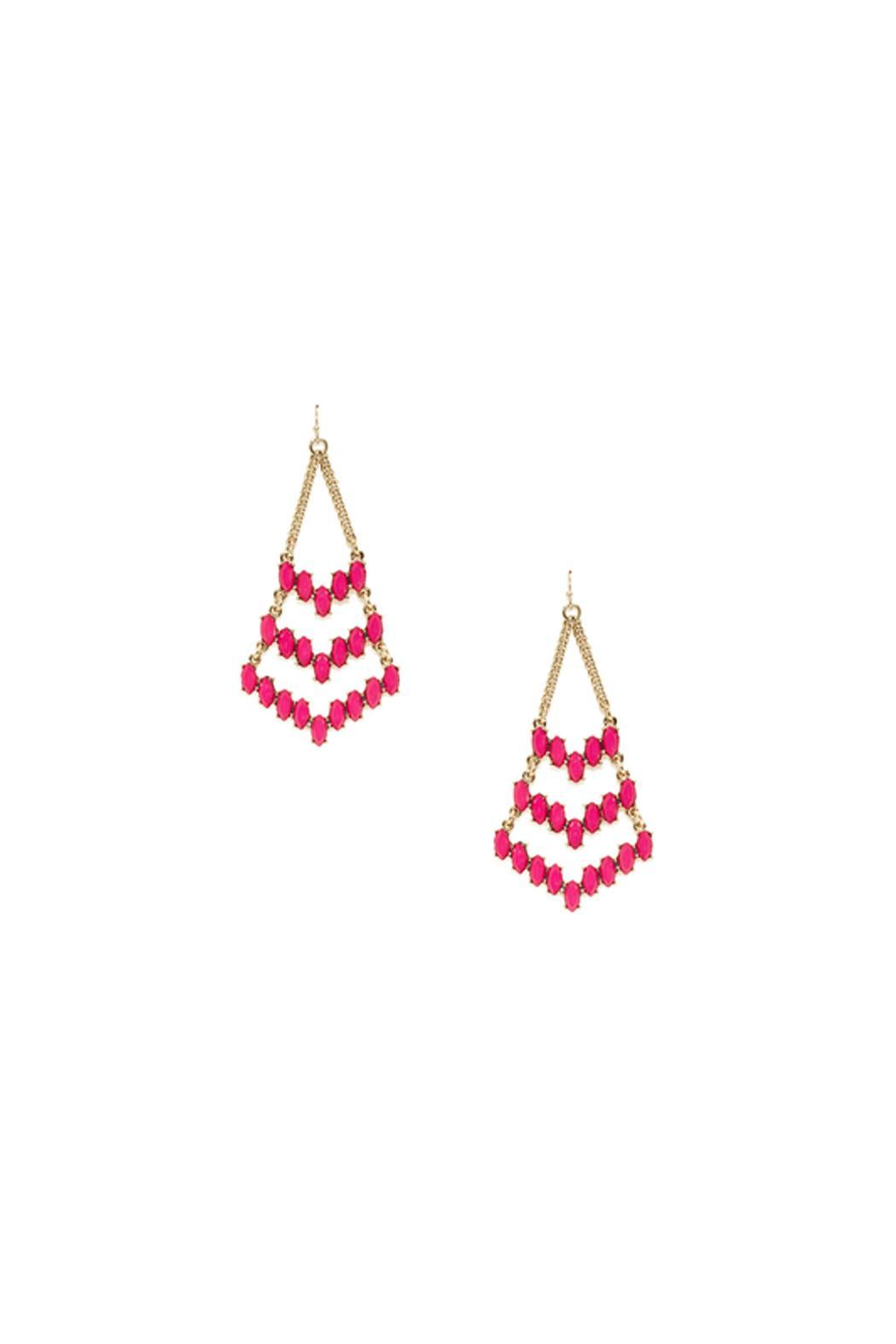 Wild Lilies Jewelry  Chevron Dangle Earrings - Front Cropped Image