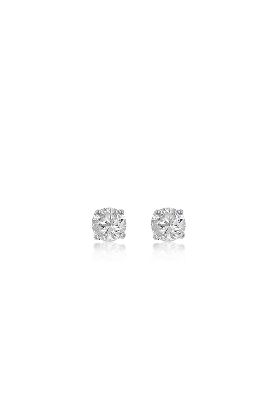 Wild Lilies Jewelry  Cubic Zirconia Studs - Front Cropped Image