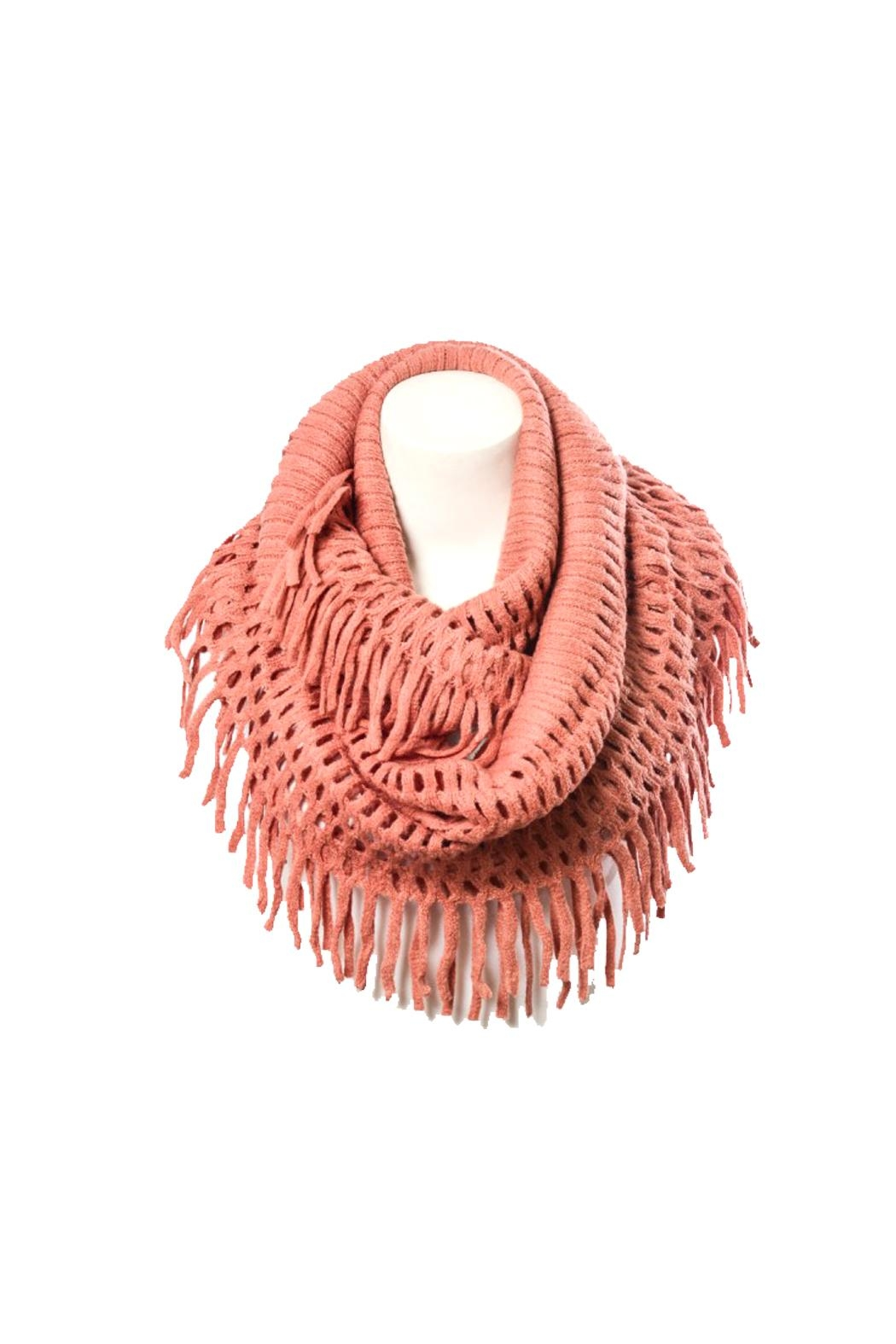 Wild Lilies Jewelry  Fringe Infinity Scarf - Front Full Image