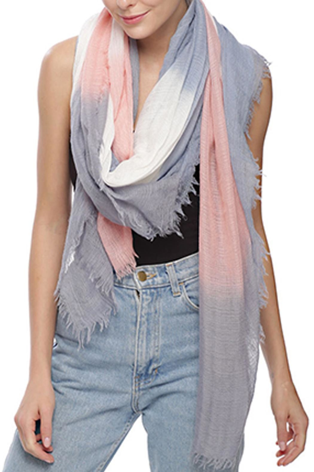 Wild Lilies Jewelry  Lightweight Ombre Scarf - Main Image