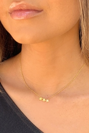 Wild Lilies Jewelry  Mini Star Necklace - Front cropped