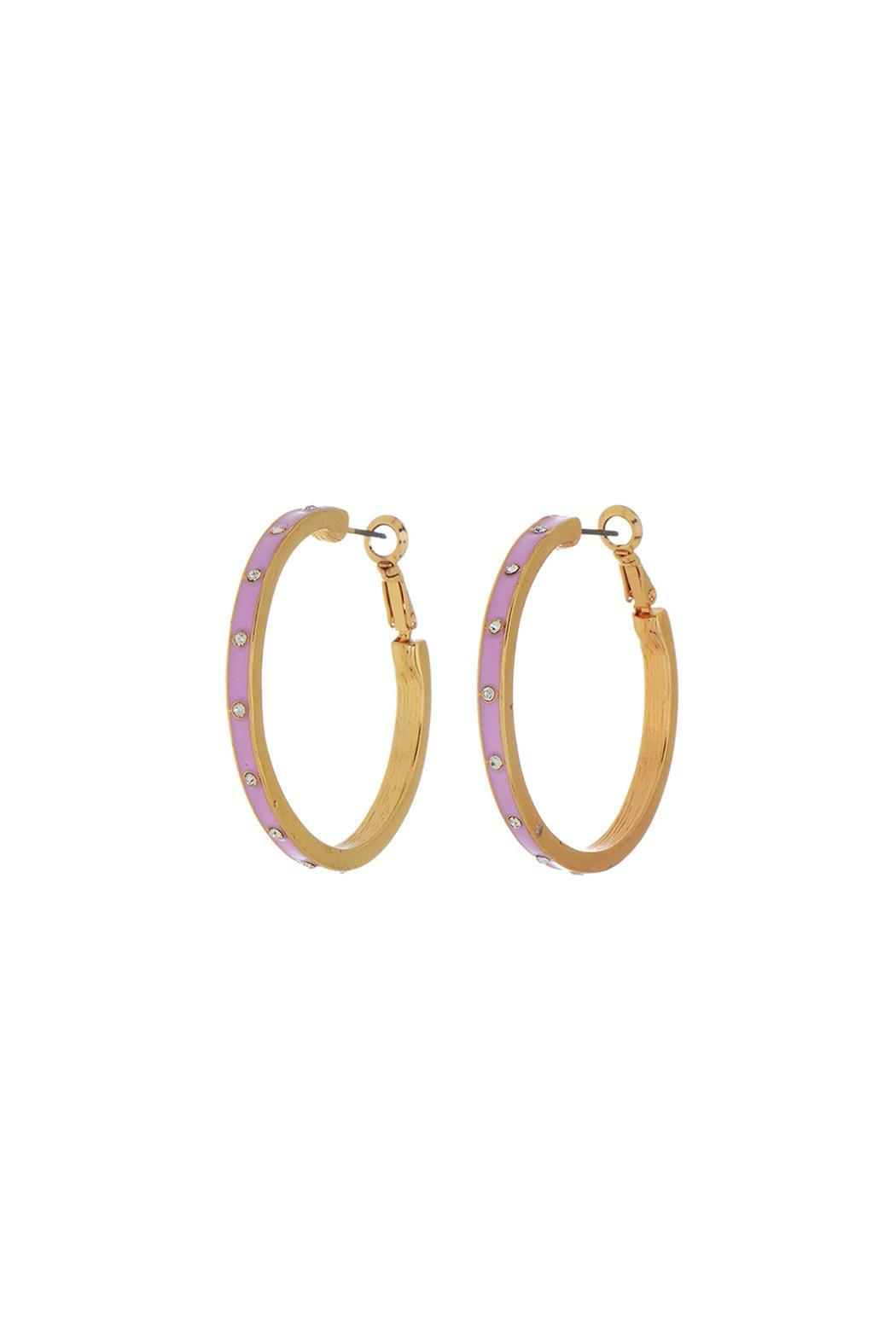 Wild Lilies Jewelry  Pink Hoop Earrings - Main Image