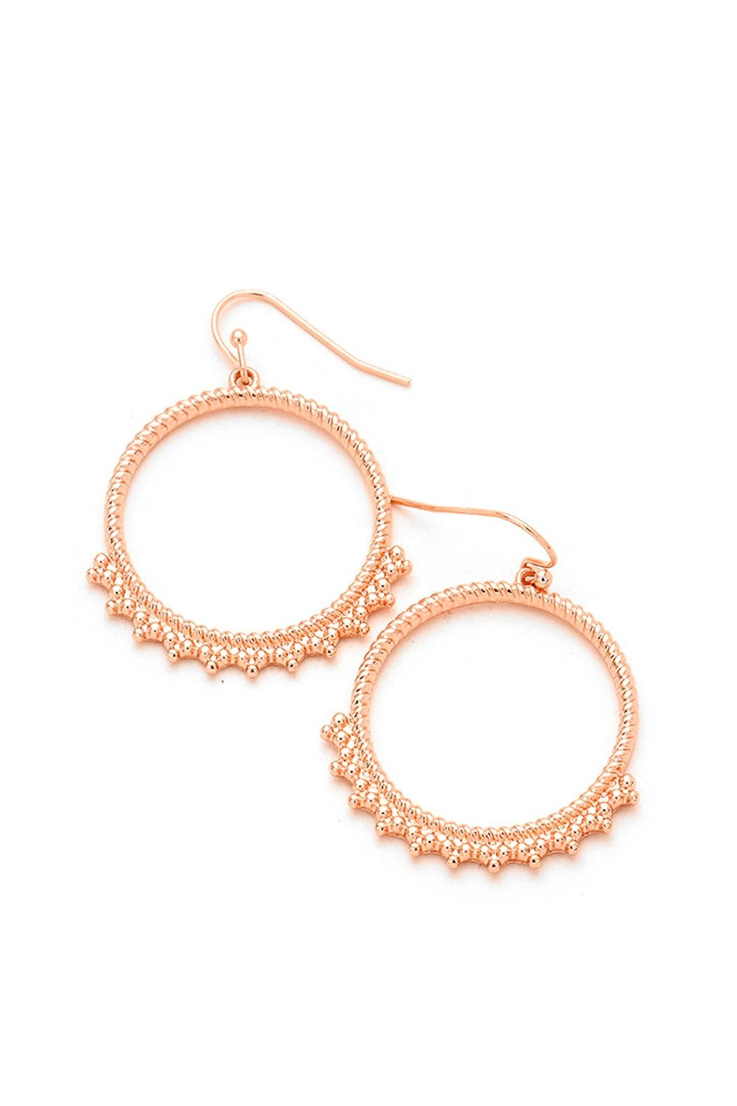 Wild Lilies Jewelry  Rose Gold Hoops - Main Image