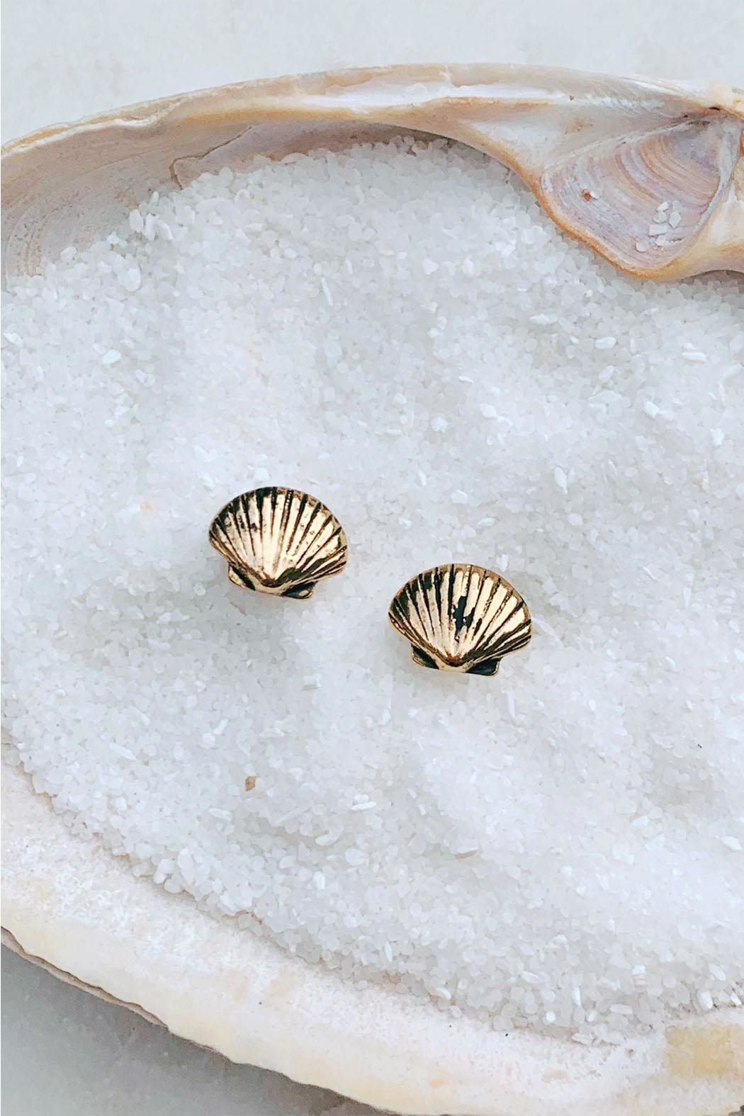 Wild Lilies Jewelry  Seashell Stud Earrings - Front Cropped Image