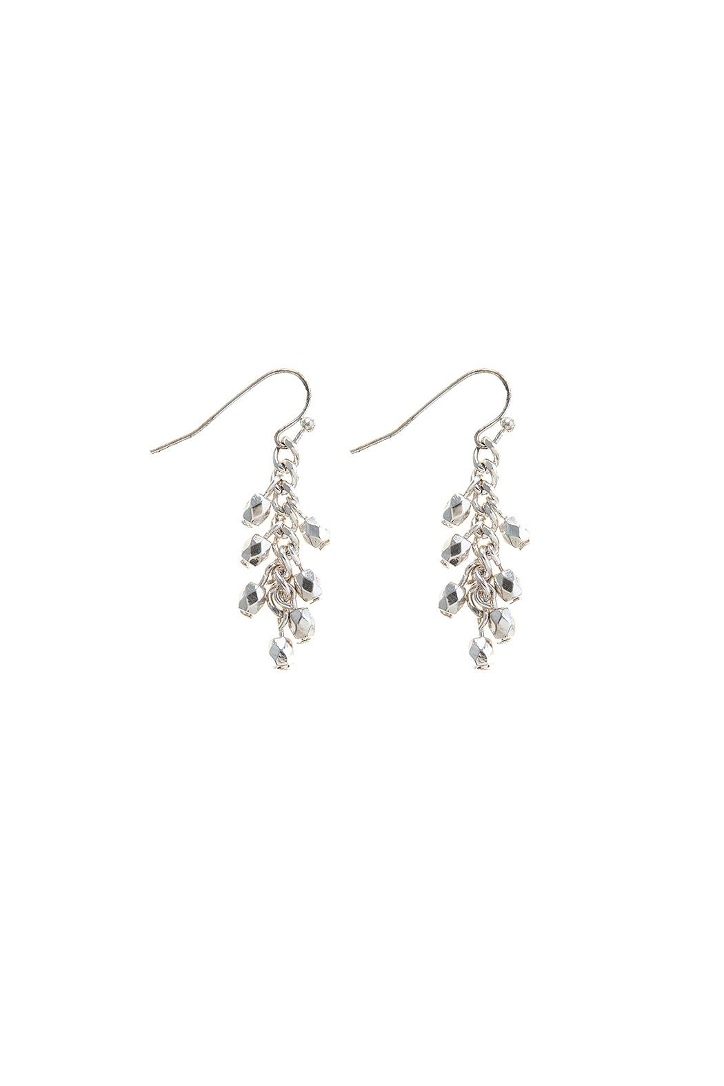 Wild Lilies Jewelry  Silver Beaded Earrings - Main Image