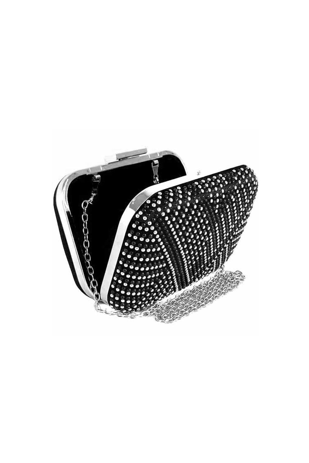 Wild Lilies Jewelry  Studded Silver Clutch - Front Full Image
