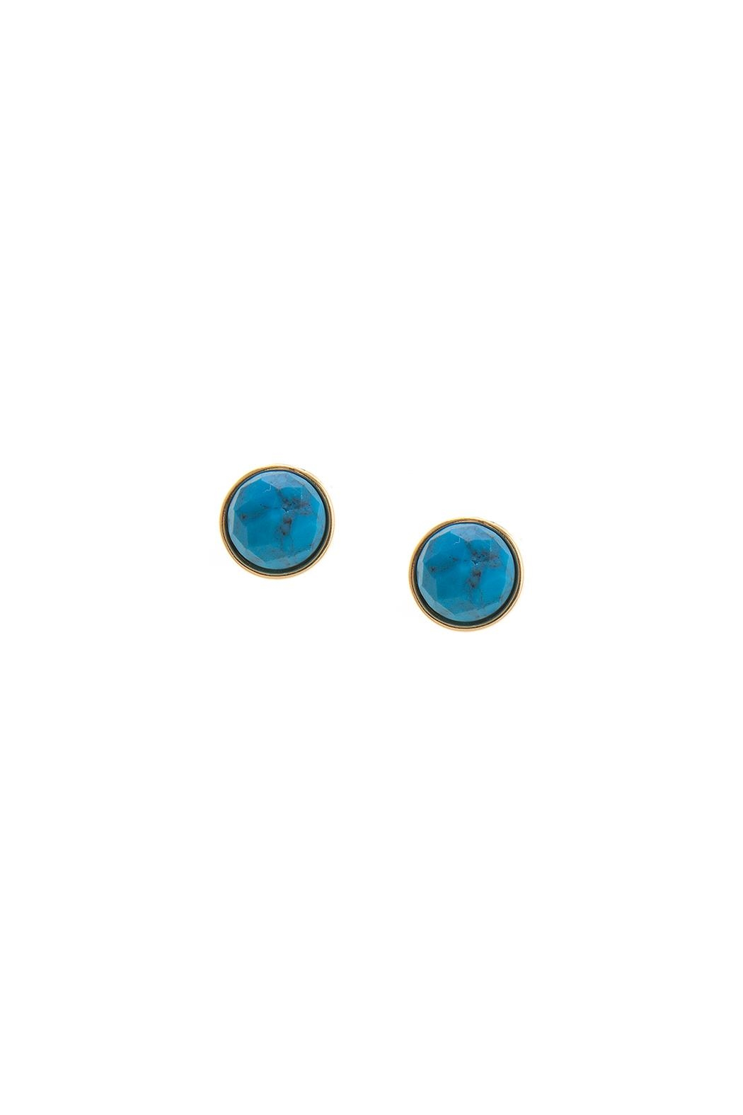 Wild Lilies Jewelry  Turquoise Stud Earrings - Main Image