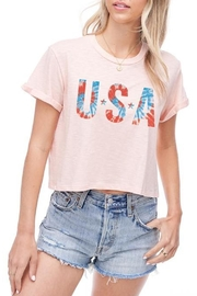 Wild Lilies Jewelry  Usa Crop Top - Front cropped