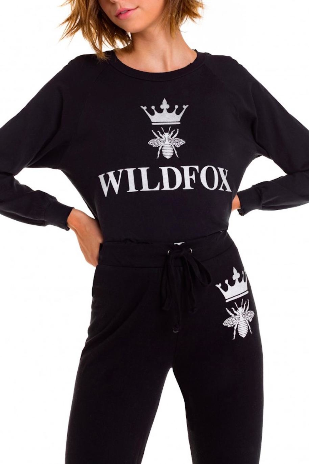 Wildfox Alchemy Sweatshirt - Main Image