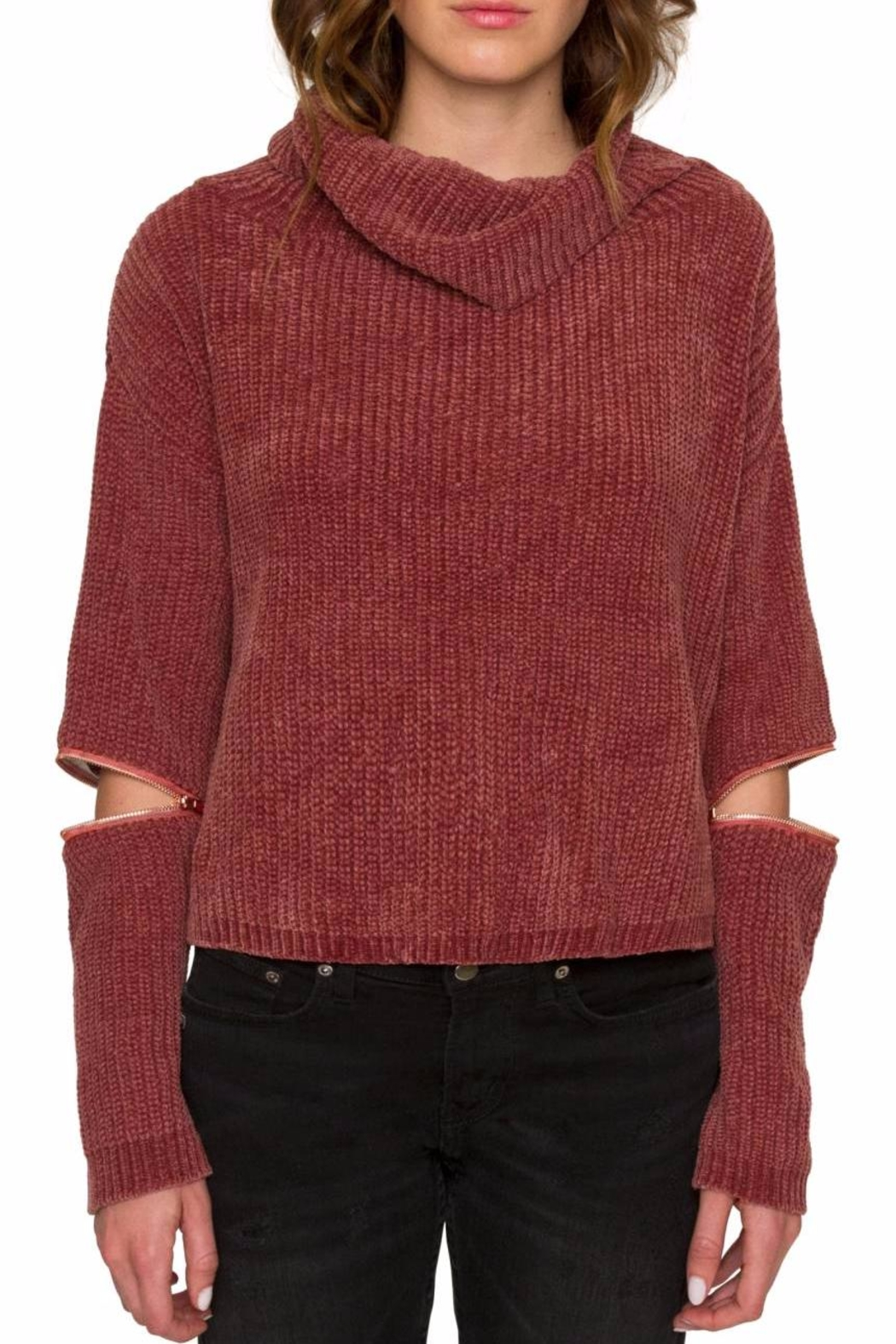 Willow & Clay Zip Sleeve Turtleneck Top - Main Image