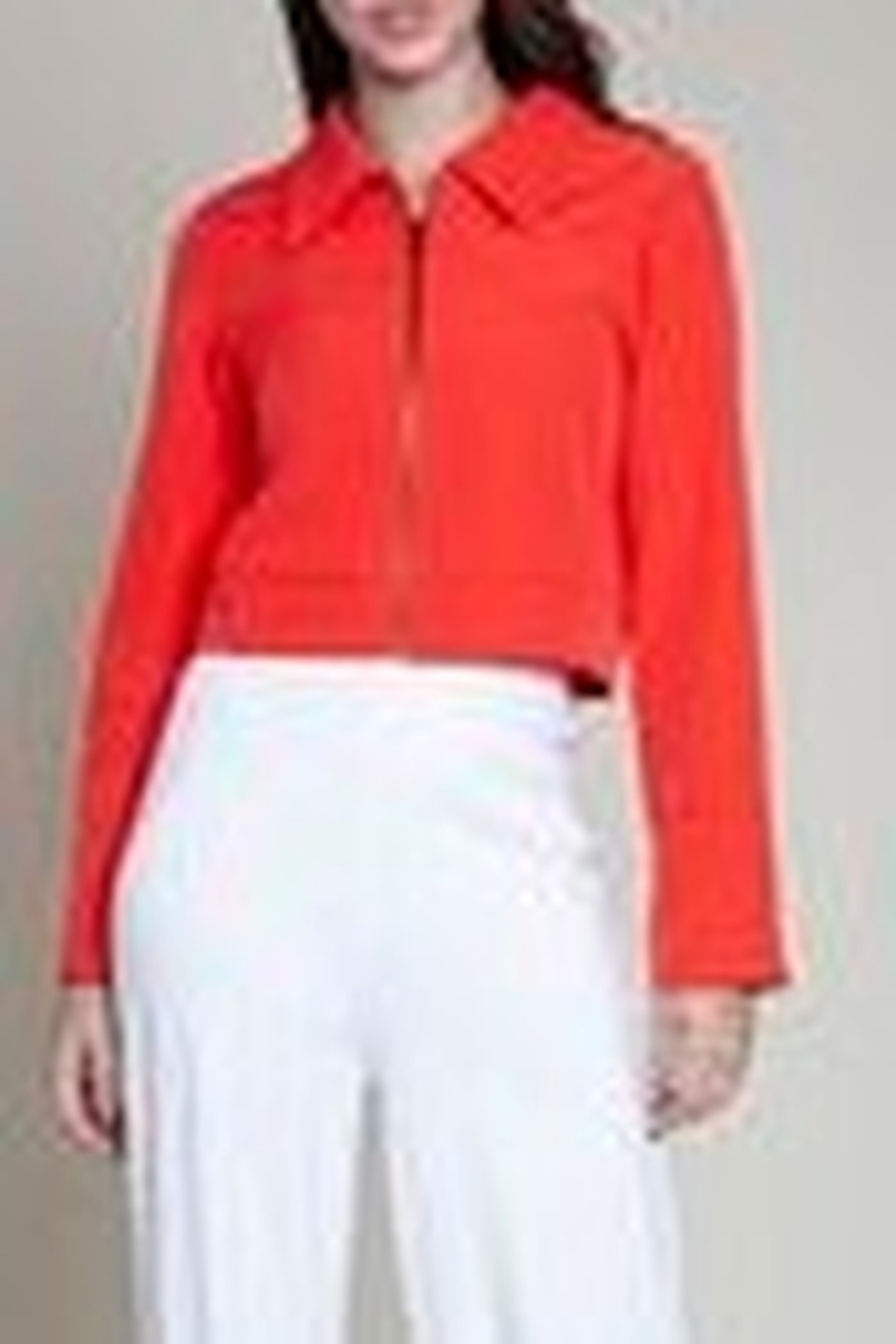 Patrizia Luca Wing Collar Jacket - Front Cropped Image