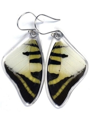 Wingstitution 5-Bar Swallowtail Earrings - Front cropped