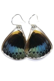 Wingstitution Archduke Butterfly Earrings - Product Mini Image