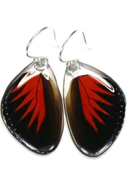 Wingstitution Doris Butterfly Earrings - Front cropped