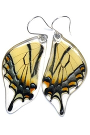 Wingstitution Eastern Swallowtail Earrings - Product Mini Image