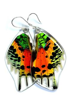 Shoptiques Product: Glowing Sunset Wings
