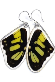 Wingstitution Malachite Butterfly Earrings - Product Mini Image