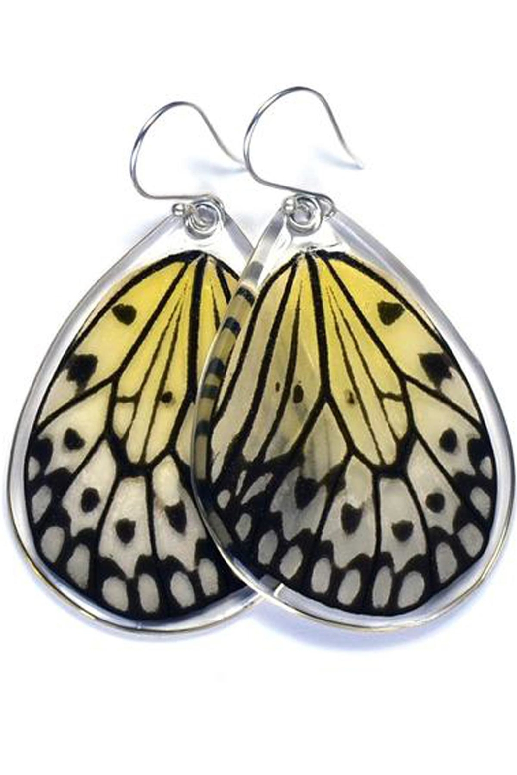 Wingstitution Paperwhite Butterfly Earrings - Main Image