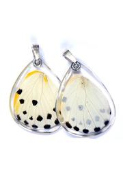 Wingstitution Paperwhite Butterfly Pendnt - Product Mini Image