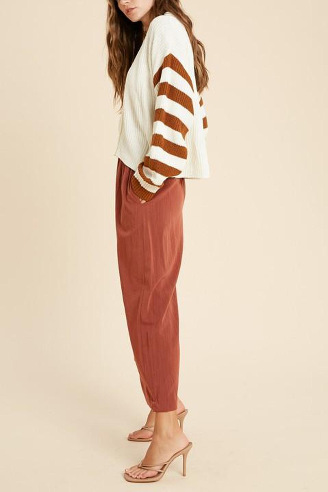 Wishlist Button-Down Striped-Sleeve Cardigan - Back Cropped Image