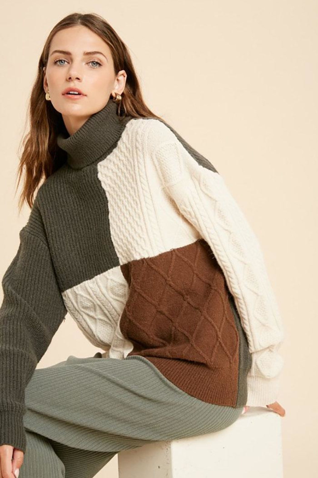Wishlist Cable Knit Colorblock Turtle Neck Pullover Sweater - Front Cropped Image