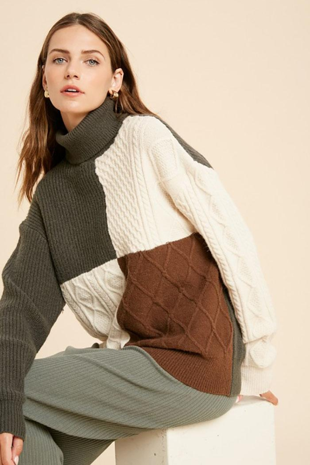 Wishlist Cable Knit Colorblock Turtleneck Pullover Sweater - Main Image